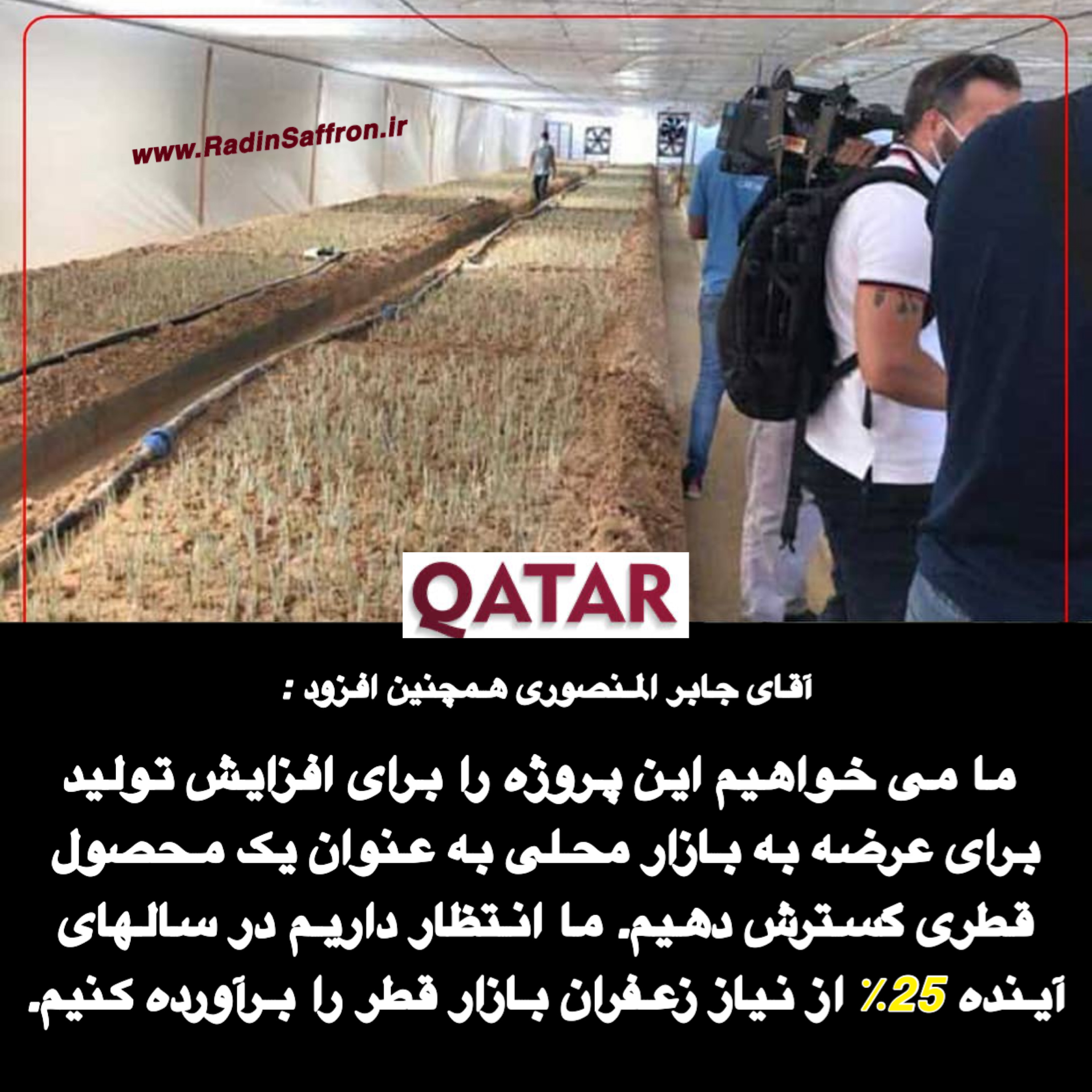 کاشت زعفران در قطر